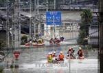 Số người thiệt mạng do mưa lũ tại Nhật Bản tăng mạnh