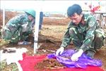 Mở rộng khu vực tìm kiếm hài cốt liệt sỹ tại Nông trường Dốc Miếu, Quảng Trị