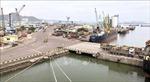 VIMC mong muốn tiếp nhận ngay Cảng Quy Nhơn