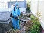 Nghệ An tập trung phòng chống bệnh sốt xuất huyết