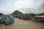 Khắc phục 'thẻ vàng' IUU: Hành trình đến với nghề cá có trách nhiệm