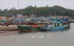 Nghệ An cần sớm xử lý việc lấn chiếm cảng Lạch Quèn