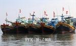 Khắc phục 'thẻ vàng'IUU: Bình Thuận phải chấm dứt số lượng tàu vi phạm