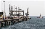 OPEC bù lượng dầu thiếu hụt sau khi Mỹ tái cấm vận Iran