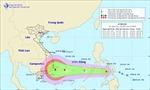 Xuất hiện áp thấp nhiệt đới; Bắc bộ rét đậm, mưa ở vài nơi