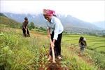 Rà soát chính sách về giảm nghèo vùng dân tộc thiểu số, miền núi