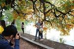 Hồ Gươm mùa cây thay lá níu chân du khách