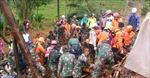 Thêm hàng chục người thiệt mạng do sạt lở đất tại Indonesia