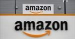 Tập đoàn Amazon và cuộc chiến tranh quyền sở hữu tên miền '.amazon'
