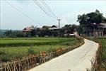 Mường Phăng -vùng căn cứ địa cách mạng về đích nông thôn mới