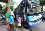 Phát triển vận tải hành khách công cộng và diện tích đất dành cho giao thông Thủ đô