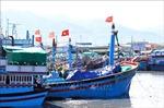 Những tàu cá vô chủ ở cảng Tịnh Hoà