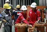 Sửa chữa Nhà máy điện Nhơn Trạch 2 hoàn thành sớm hơn dự kiến