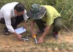 Bác bỏ tin hổ xuất hiện gần hang động núi lửa Krông Nô, Đắk Nông