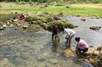 Điều tra, tìm kiếm nguồn nước dưới đất cung cấp cho đồng bào vùng cao