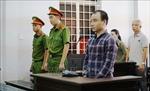 Lái xe container ngủ gật gây tai nạn lĩnh án 14 năm tù