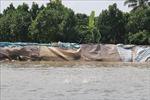 Sạt lở đe dọa sản xuất tại đầu nguồn sông Tiền