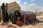 Thổ Nhĩ Kỳ cấp chứng nhận định cư cho trên 1 triệu người tị nạn Syria