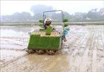 Bảo đảm cấp đủ nước cho vụ Đông Xuân sau khi đợt 3 lấy nước kết thúc