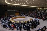Việt Nam và HĐBA: Việt Nam ủng hộ tìm kiếm giải pháp chính trị cho Syria