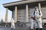 Hàn Quốc ghi nhận 60 ca nhiễm SARS-CoV-2 mới, nâng tổng số lên 893 ca