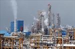 Giá dầu thế giới giảm tuần thứ 5 liên tiếp