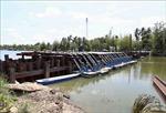 Xâm nhập mặn ở đồng bằng sông Cửu Long cao hơn trung bình nhiều năm
