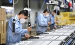Lợi nhuận ngành thông tin điện tử Trung Quốc giảm 87% trong hai tháng đầu năm