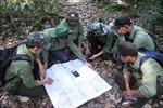 Áp lực giữ rừng ở Tây Nguyên: Bài 1 - Những chuyển biến tích cực sau lệnh 'đóng cửa rừng' của Thủ tướng