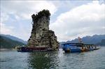 'Hạ Long cạn' giữa đại ngàn Tuyên Quang