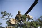 Mỹ và Ba Lan tập trận quân sự quy mô lớn