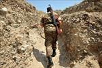 CSTO quan ngại gia tăng căng thẳng ở biên giới Armenia - Azerbaijan