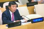 Việt Nam kêu gọi lực lượng Houthi tại Yemen hợp tác với LHQ về vấn đề tàu chở dầu
