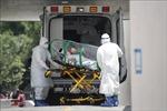 Thế giới ghi nhận trên 11,42 triệu ca mắc, 534.398 người tử vong do COVID-19