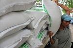Doanh thu từ xuất khẩu gạo ở Campuchia tăng cao