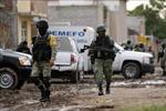 Xung đột giữa hai nhóm an ninh tự vệ địa phương ở Mexico khiến 12 người thiệt mạng