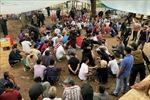 Triệt phá sới bạc 'khủng' ở An Giang, bắt giữ 150 đối tượng