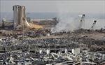 Thảm họa từ vụ nổ ở Beirut, Liban