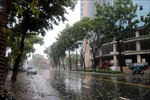 Bão số 5 làm một người chết, nhiều người bị thương và hàng ngàn ngôi nhà bị tốc mái