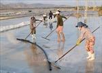 Đổi mới sản xuất, phát triển bền vững nghề muối