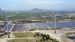 Khuyến nghị phát triển điện gió tại Việt Nam