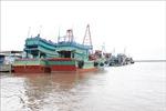 Khắc phục 'thẻ vàng'IUU: Kiên quyết phạt chủ tàu cá không lắp đặt giám sát hành trình