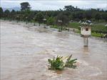 Ba người tử vong do mưa lũ tại tỉnh Kon Tum