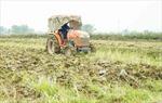 Lịch lấy nước gieo cấy vụ Đông Xuân khu vực Trung du và Đồng bằng Bắc Bộ