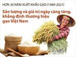 Hơn 30 năm xuất khẩu gạo (1989-2021): Khẳng định thương hiệu gạo Việt Nam