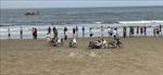 4 học sinh tử vong và mất tích do bị cuốn trôi khi tắm biển
