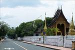 Giữa bộn bề khó khăn, người Việt tại Lào kiên trì chống dịch