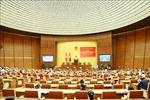 Vận dụng, phát triển sáng tạo tư tưởng Hồ Chí Minh vào thực tiễn phát triển đất nước