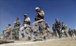 Giao tranh tái diễn tại miền Bắc Yemen làm 47 người thiệt mạng
