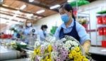 Doanh nghiệp chế biến Lâm Đồng xây dựng kịch bản sản xuất